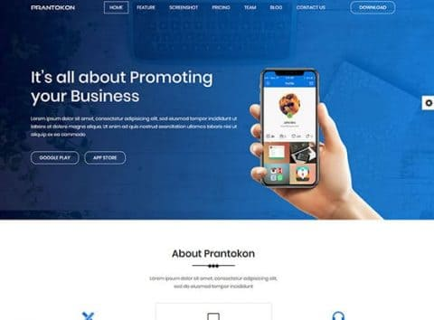 Iconic Business Solutions Web Design